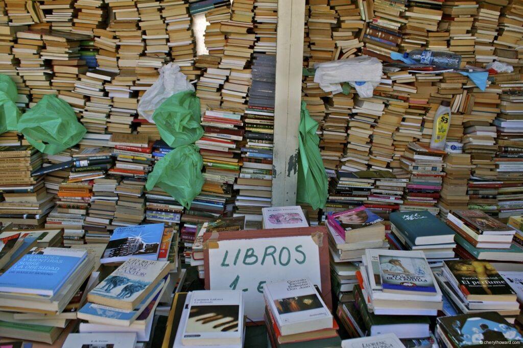 Flea Market Barcelona Books