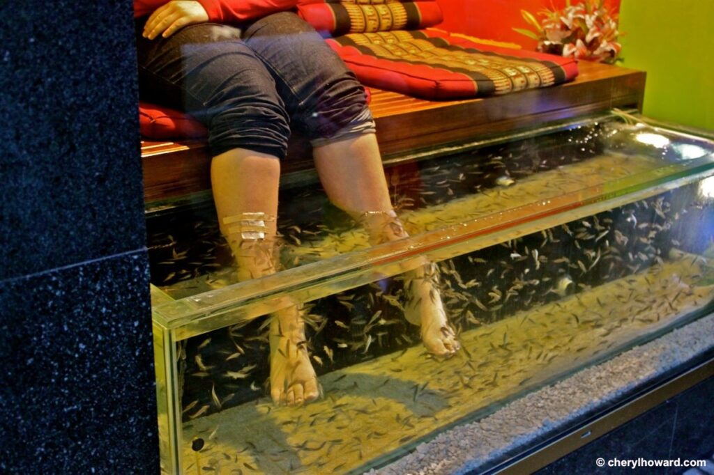 Prague Fish Pedicure