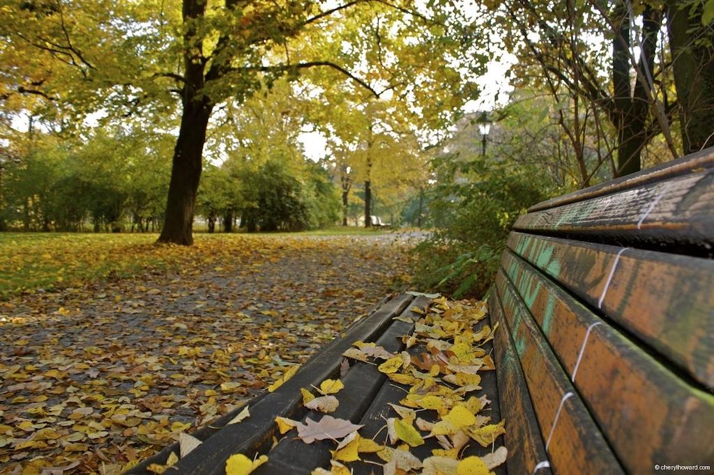 Fall In Berlin - Volkspark Friedrichshain Autumn Bench