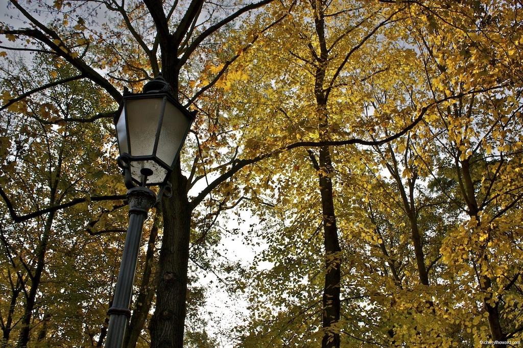 Fall In Berlin - Volkspark Friedrichshain Autumn Lamp