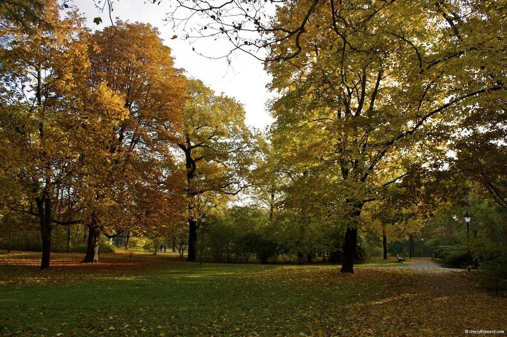 Fall In Berlin - Volkspark Friedrichshain Autumn Yellow Orange