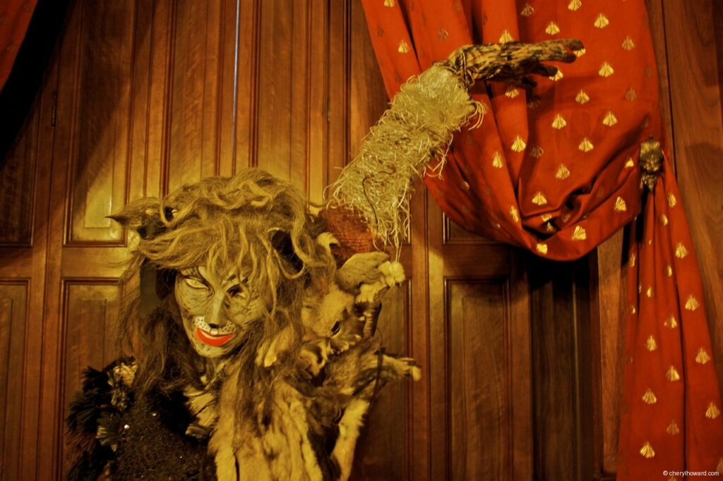 Katten Kabinet Art Museum Cats Musical Tribute