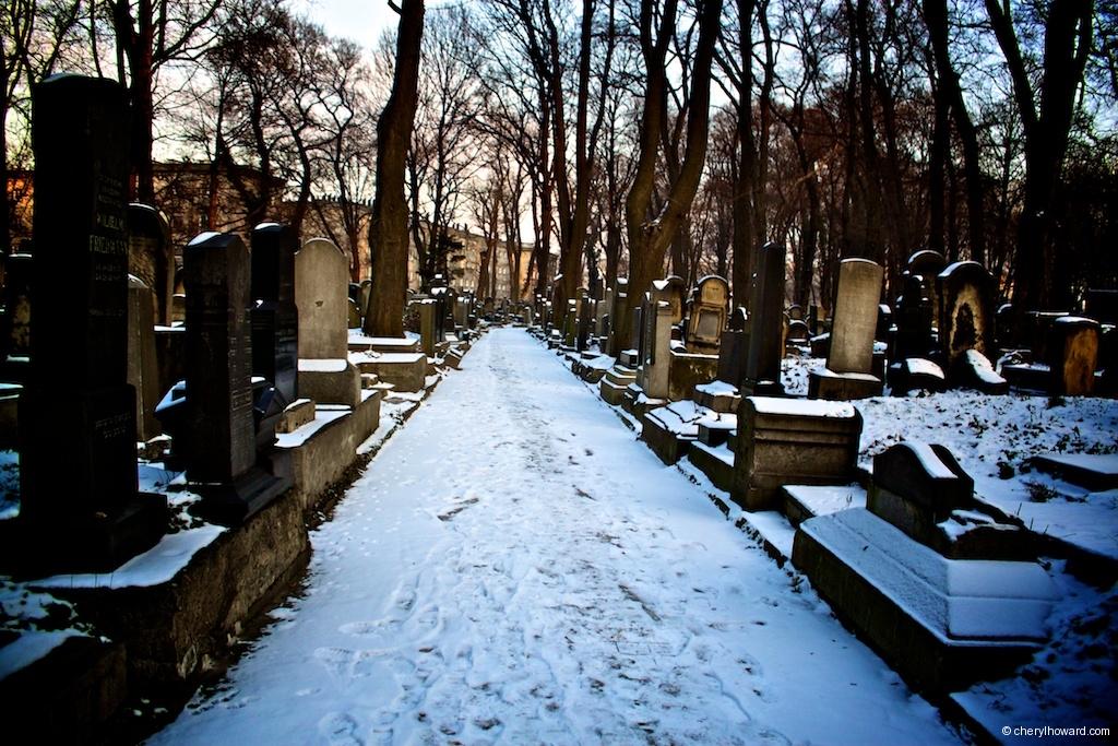 New Jewish Cemetery Krakow Snow