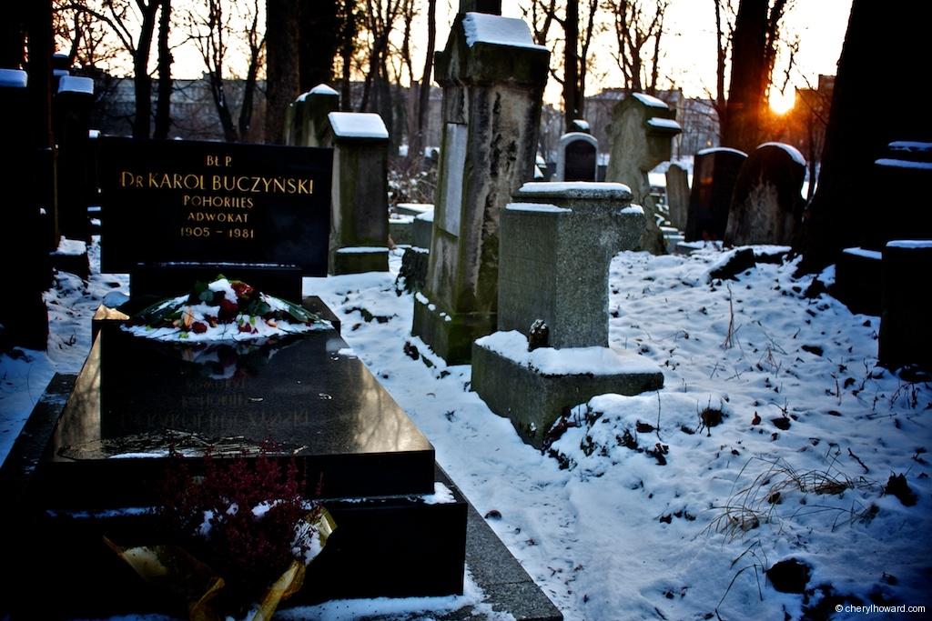 New Jewish Cemetery Sunset Winter