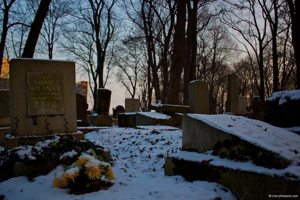 Snowy Grounds New Jewish Cemetery Poland