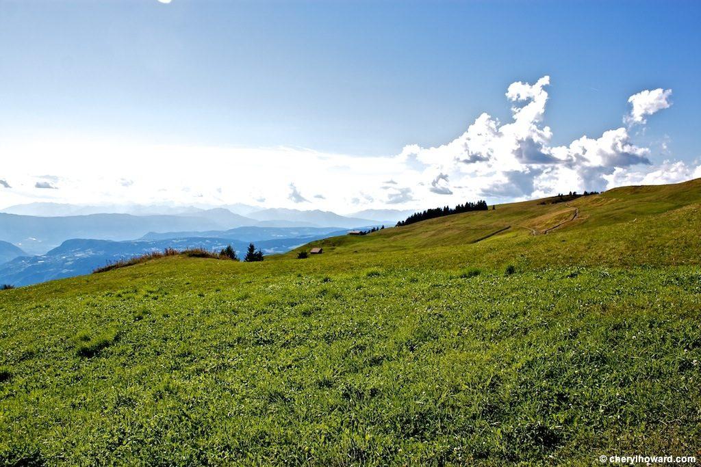 Visit Alpe Di Siusi Italy Field