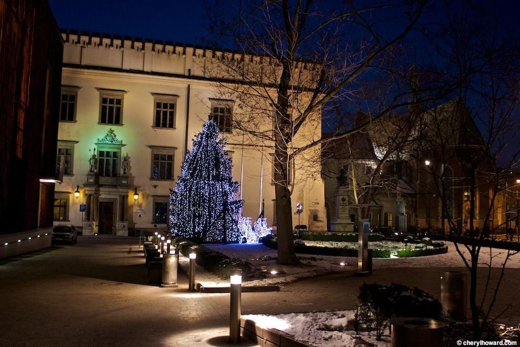 Krakow Poland At Night - Christmas Tree