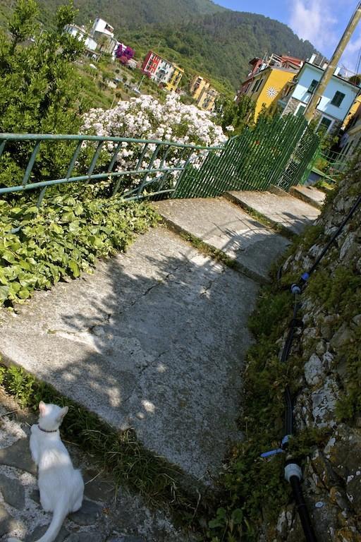 Corniglia, Italy.