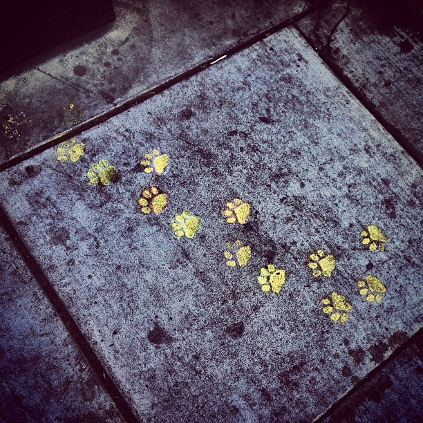 San Francisco Street Art - Dogpatch Paw Prints