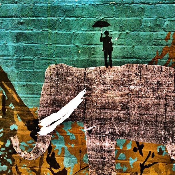 San Francisco Street Art Man Umbrella Elephany