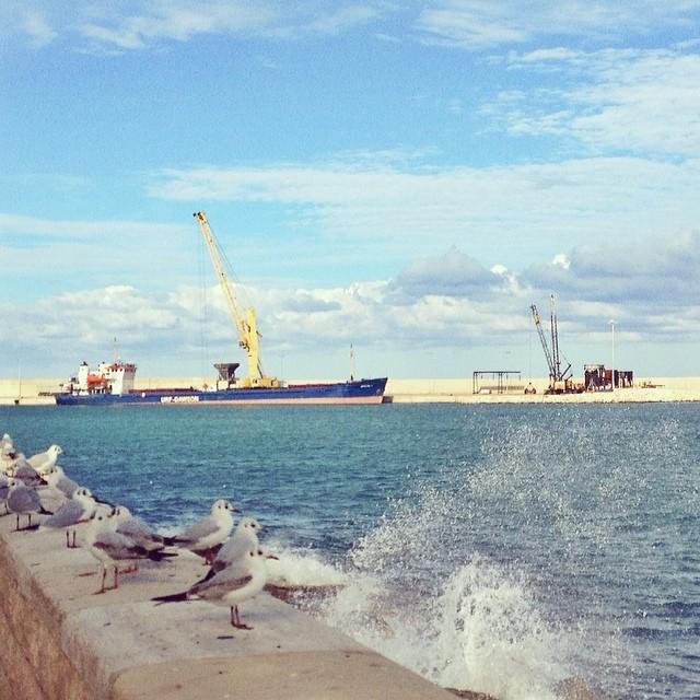 Monopoli Harbour Area
