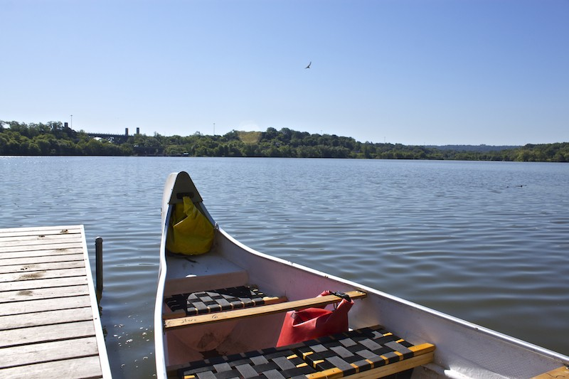 Canoeing Through Cootes Paradise Marsh |