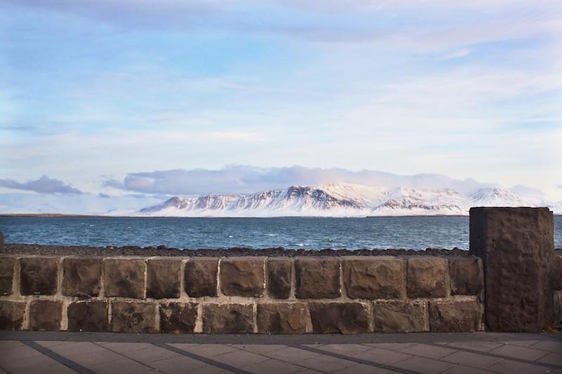 Reykjavik Iceland Harpa Background Nature
