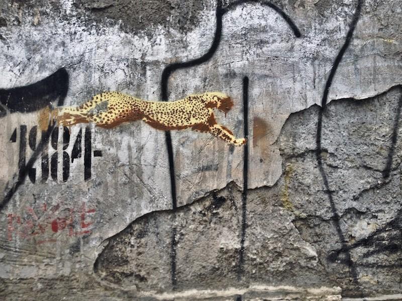 Cheetah Street Art Budapest