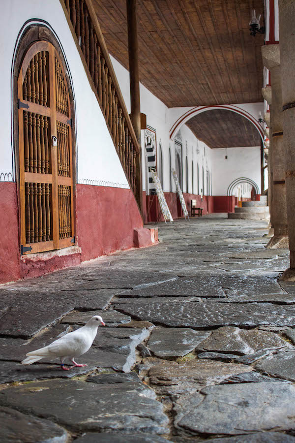 Rila Monastery Bird