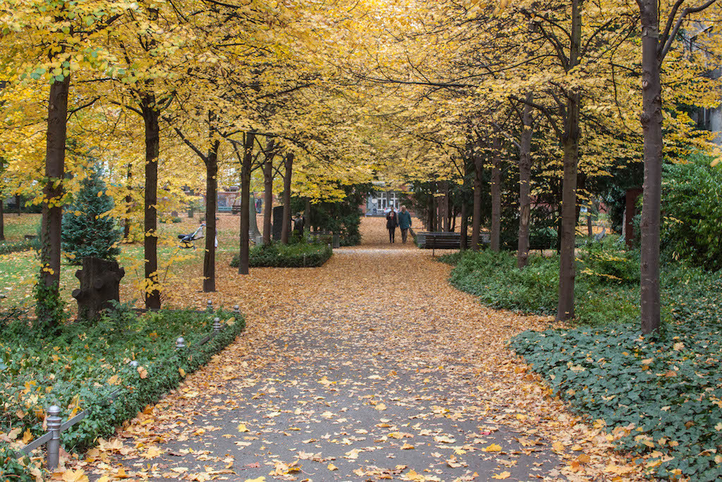 Berlin Sunday Fall Walks on Pappelalle