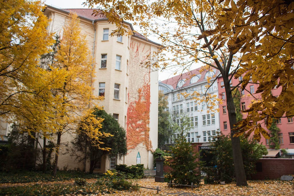 Berlin Sunday Fall on Pappelalle