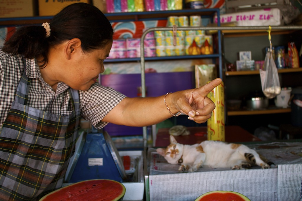 Markets in Trang Lady Pointing with Cat