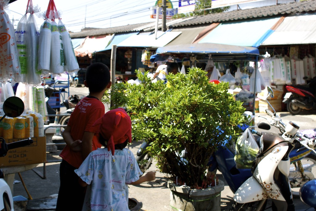 Markets in Trang Little Kids