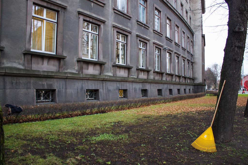 Riga Photos - Yellow Rake