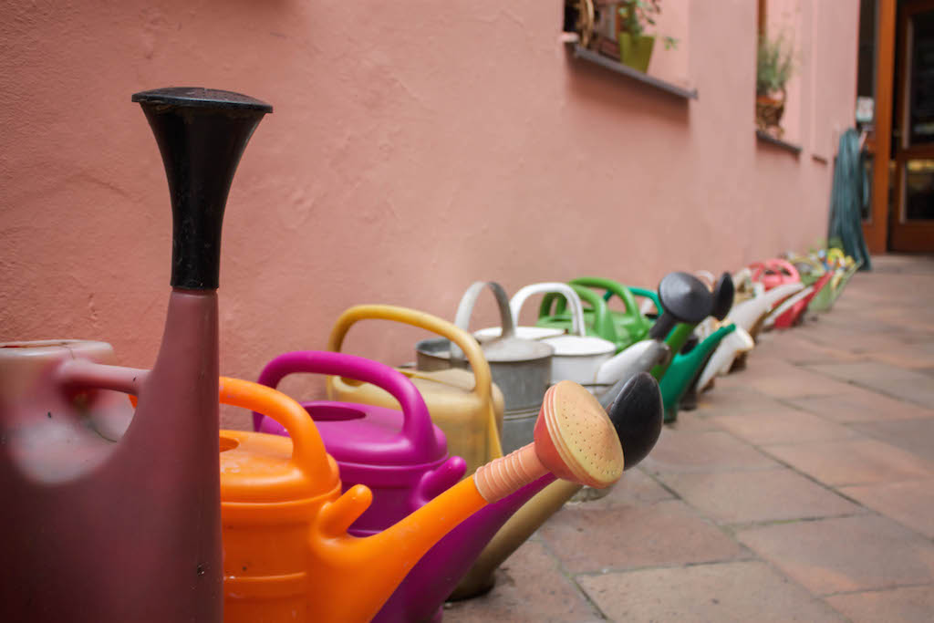 Prague Photos - Watering Cans