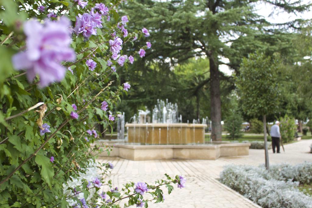 Visit Podgorica Kings Park