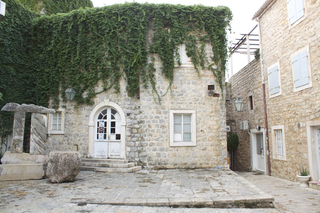 Budva Old Town - Leaf Covered Wall