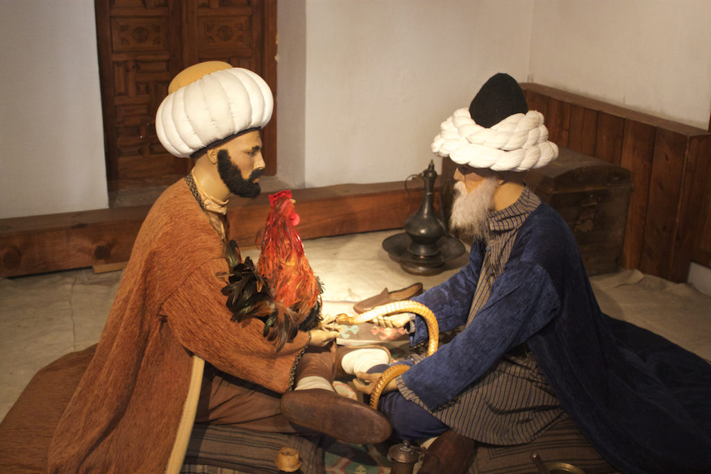 Things To Do in Edirne Turkey - Sultan Beyazıt II Mosque Complex Display Health Museum