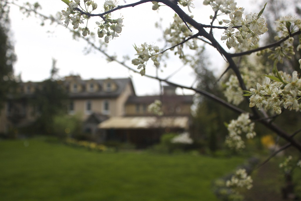 Benmiller Inn and Spa - Blossoms