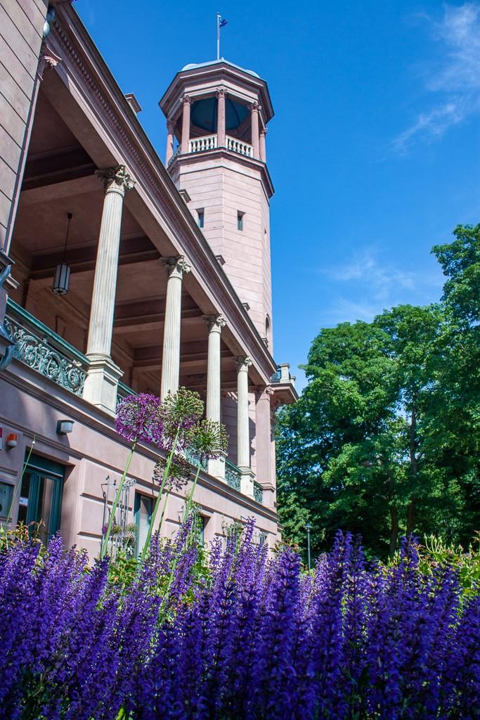 Schlosspark Biesdorf Berlin - Flowers