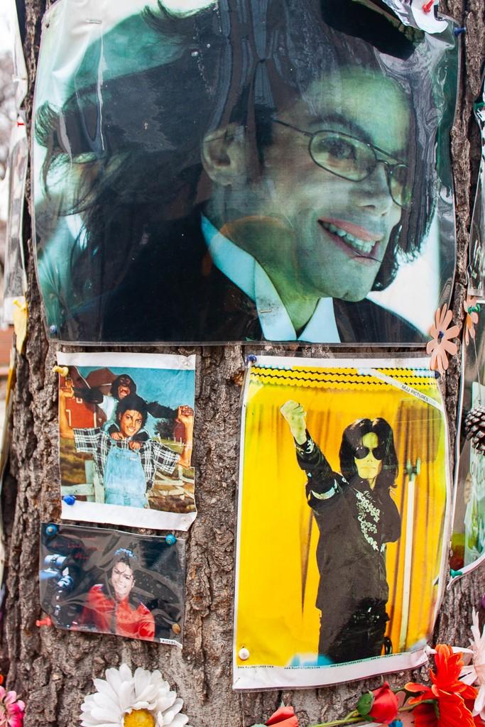 Michael Jackson Memorial Tree Budapest - Near Kempinski Hotel