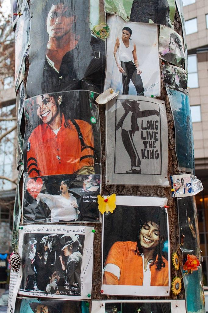 Michael Jackson Memorial Tree Budapest - Photos