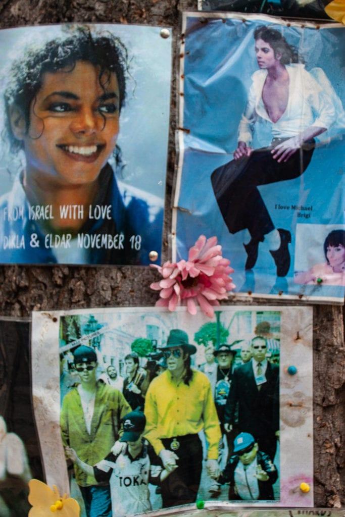 Michael Jackson Memorial Tree Budapest - Photos & Posters