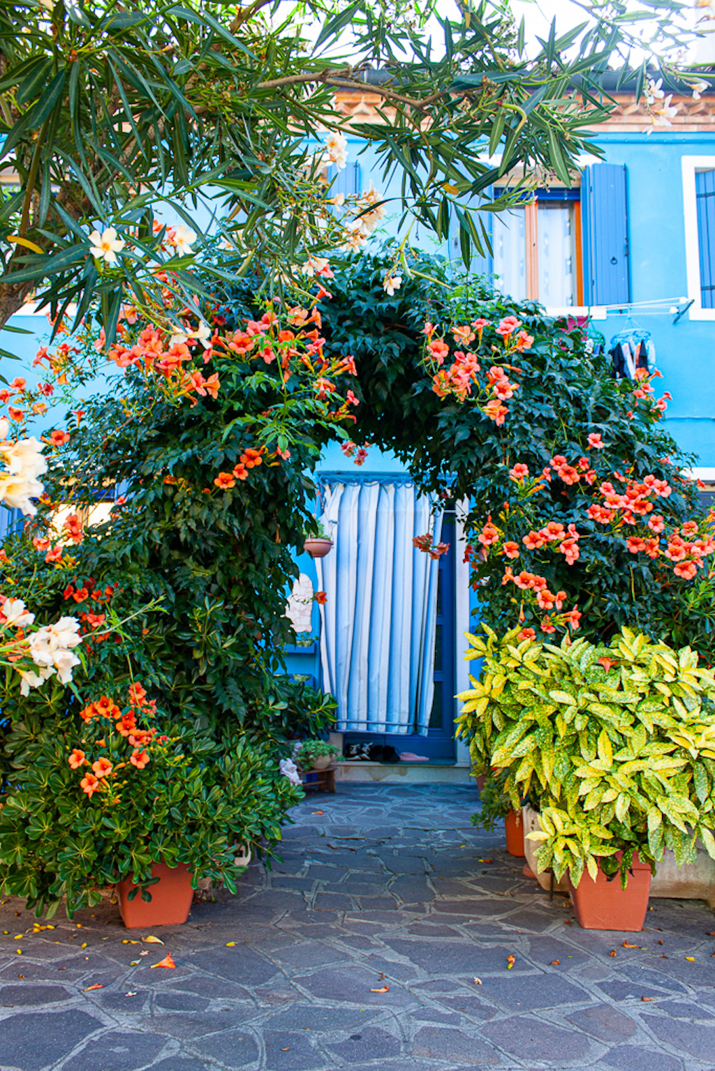 Visit Burano Italy - Flowers At Entrance