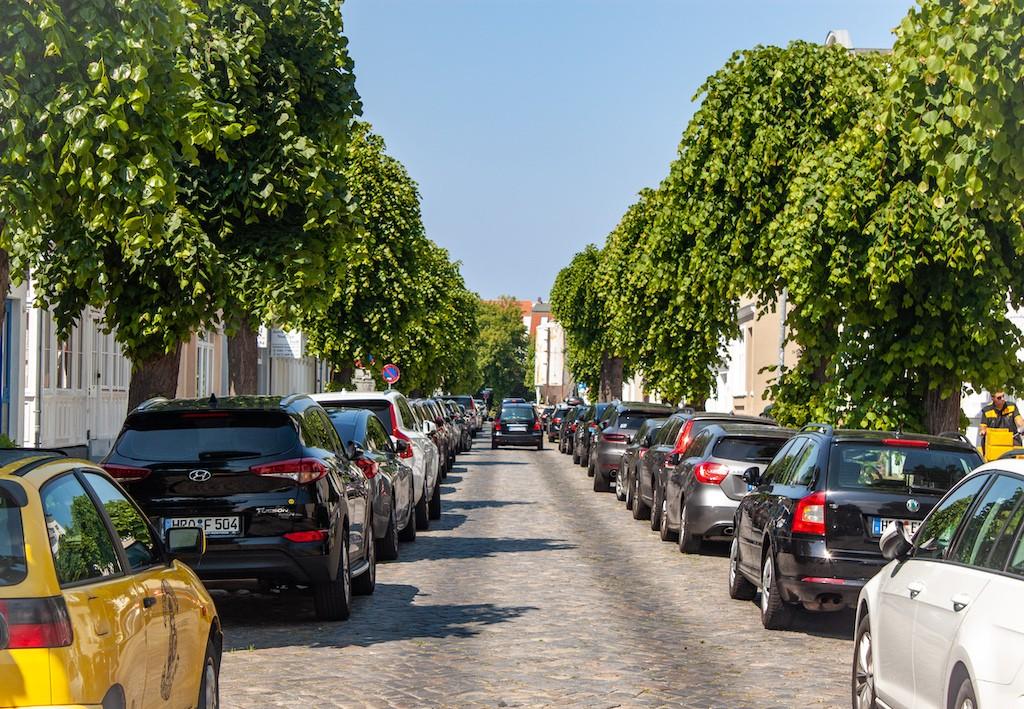 Warnemünde - Trees