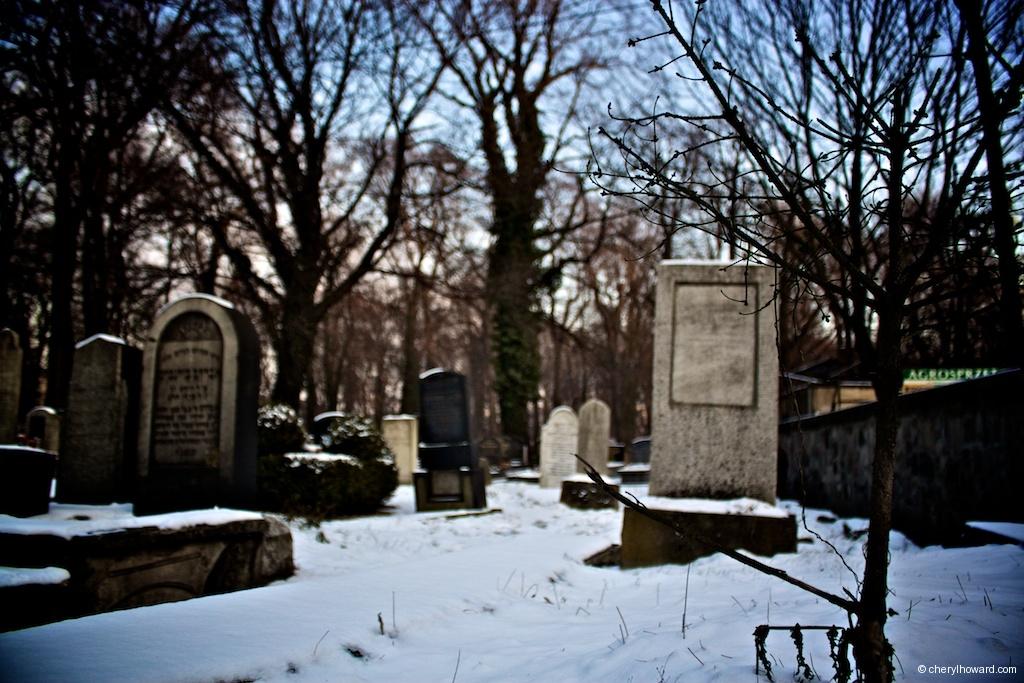 New Jewish Cemetery Poland