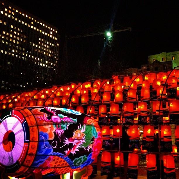 Garden Of Lanterns Exhibit Ottawa