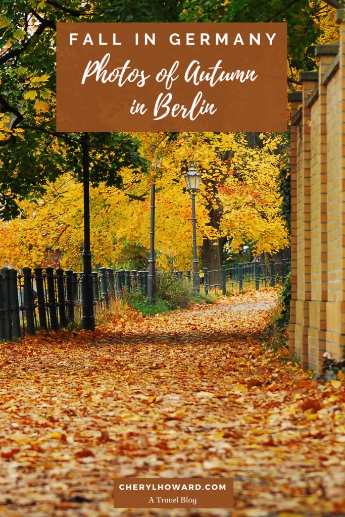 Autumn In Berlin - Pin