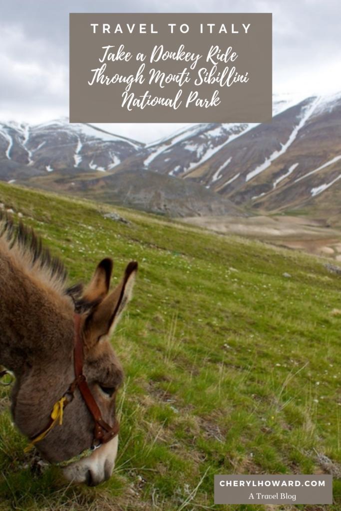 Monti Sibillini National Park - Pin