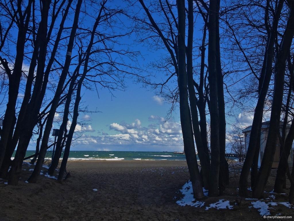 Sopot Baltic Sea Through Trees
