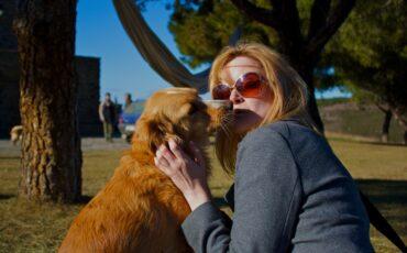 Dogs Of Costa Brava Spain